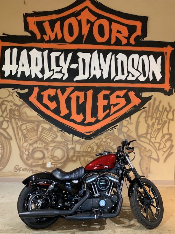 ** 2017 H-D XL883N - Sportster ** Red Tagged!