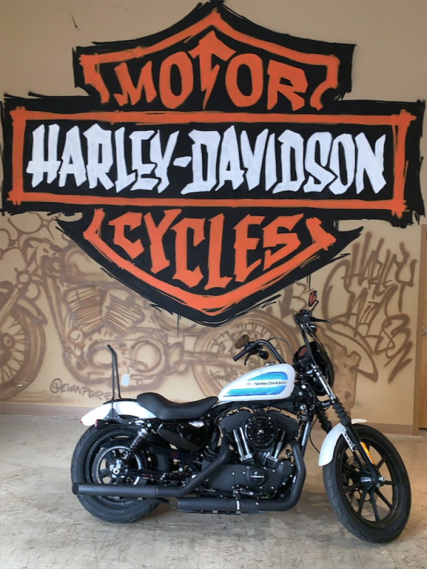 2018 H-D XL 1200NS  Sportster Iron