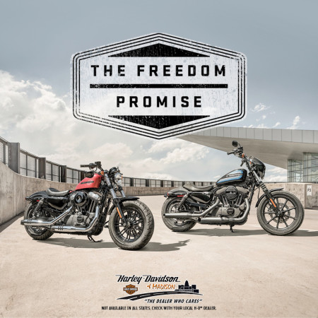 The 2019 Freedom Promise