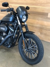 2009 HD Sportster® XL883N Iron™ 883 thumb 0