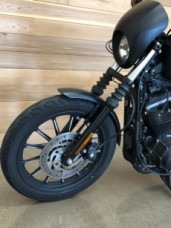 2009 HD Sportster® XL883N Iron™ 883 thumb 1