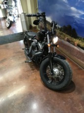 2013 HD Sportster XL 1200 Forty-Eight thumb 1