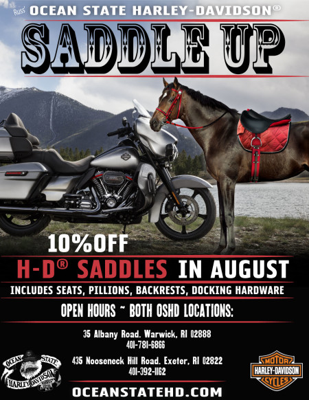 Saddle Up:  10% Off H-D® Motorcycle Seats, Pillions, Backrests, & Docking Hardware in August.