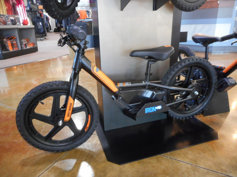 IRONe16 Electric Bike