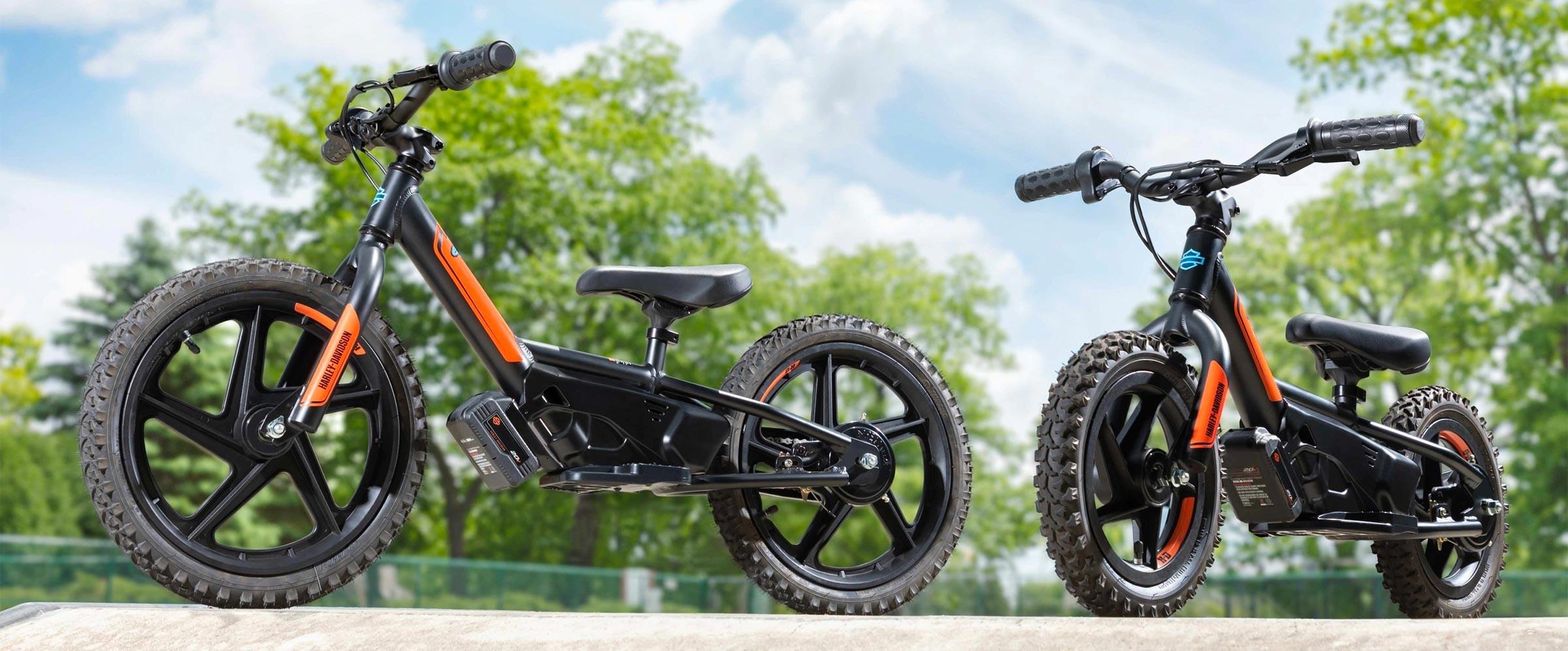 Super Electric Balance Bikes Ozark Harley Davidson Pdpeps Interior Chair Design Pdpepsorg