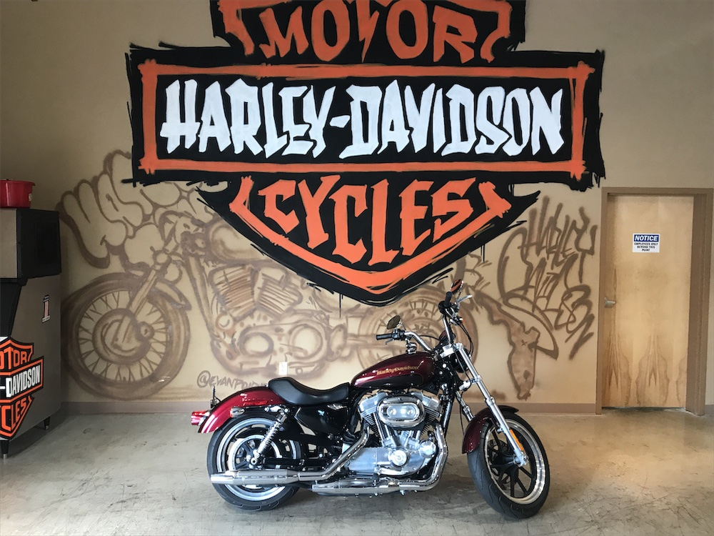 2015 H-D XL 883L Sportster SuperLow