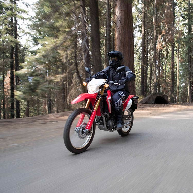 2018 CRF250L Rally Instagram image 1