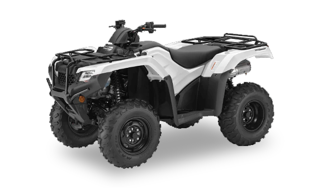 2019 FourTrax Rancher 4x4 Automatic DCT IRS EPS