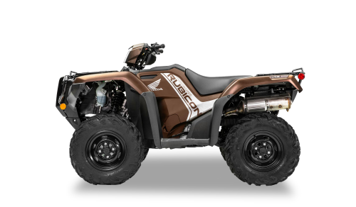 2020 Fourtrax Foreman Rubicon 4X4 EPS