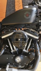 XL 883N 2019 Iron 883<sup>™</sup> thumb 1