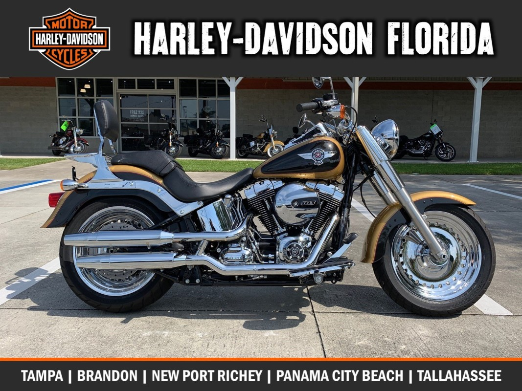 Harley-Davidson<sup>®</sup> 2017 Fat Boy<sup>®</sup>