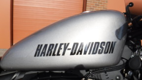 Harley-Davidson 2017 XL1200CX Sportster Roadster thumb 2