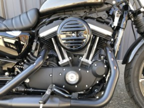XL 883N 2020 Iron 883™ thumb 1
