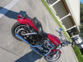 Harley-Davidson<sup>®</sup> 2006 Sportster® 1200 Low thumb 2