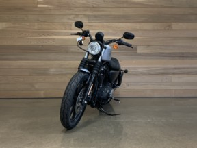 2020 XL883N Iron™ 883 Sportster 883 thumb 2