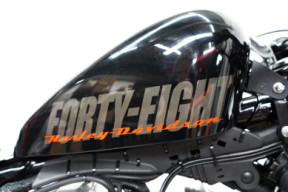 XL 1200X 2014 Forty-Eight<sup>®</sup> thumb 1