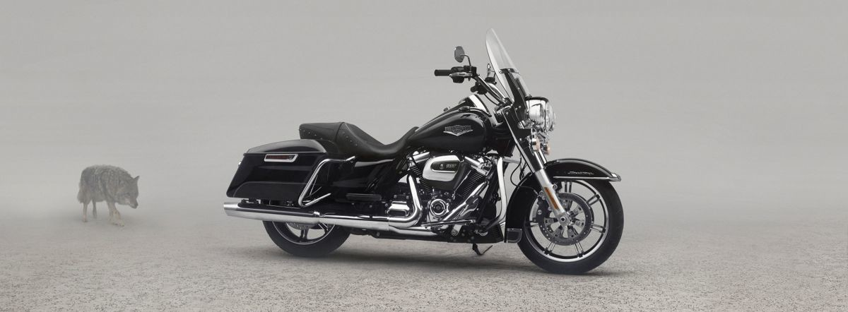 2020 HD FLHR - Touring Road King®