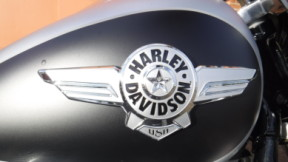 2020 Harley-Davidson Softail FLBS Fat Boy 114 thumb 2