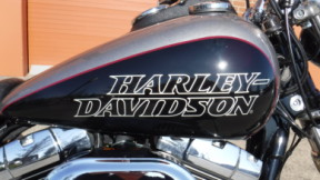 2017 Harley-Davidson FXDL Dyna Lowrider thumb 3