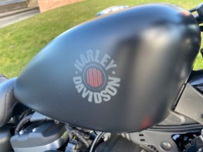 Used 2019 Harley-Davidson® Iron 883™ thumb 0