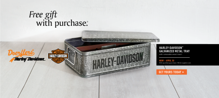 Spring Gift with Purchase - Premium Galvanized Metal Tray