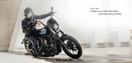 Sportster Iron 1200 XL1200NS