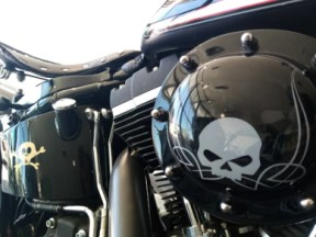 2000 Softail Cross Bones™  thumb 1