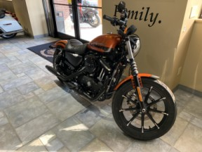 2020 H-D XL 883N Iron 883 thumb 3