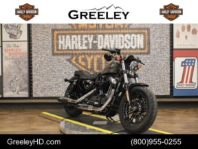 2019 Harley-Davidson Sportster Forty-Eight XL 1200X thumb 1