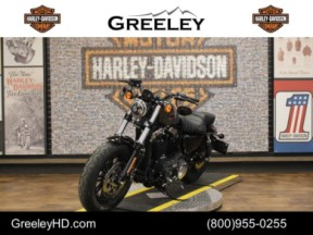 2019 Harley-Davidson Sportster Forty-Eight XL 1200X thumb 0