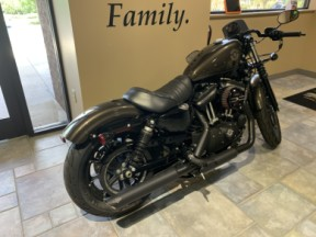 2020 H-D XL 883N Iron 883 thumb 1