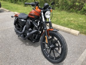 NEW 2020 Harley-Davidson® Iron 883™ XL883N w/Stage I, V&H Pipes thumb 3