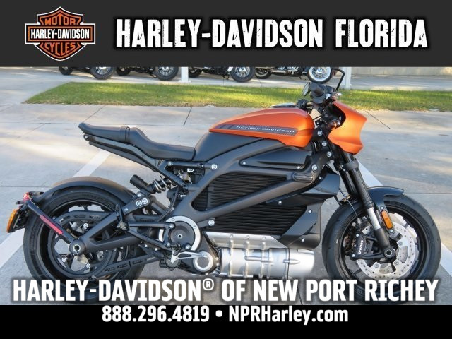 2020 Harley-Davidson<sup>®</sup> LiveWire™