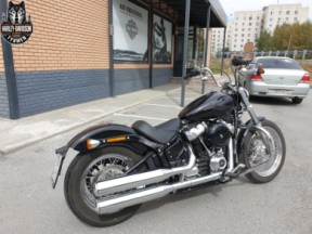 Softail STANDARD thumb 3