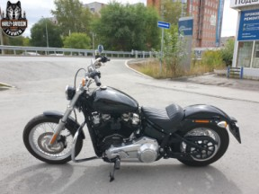 Softail STANDARD thumb 2