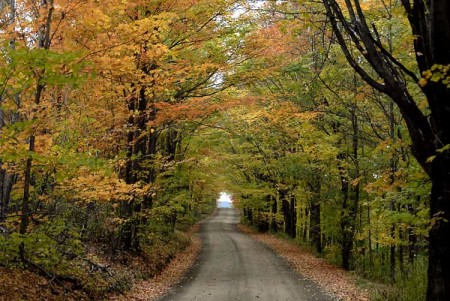 Fall Foliage Ride with FX Thunder H.O.G.® Chapter