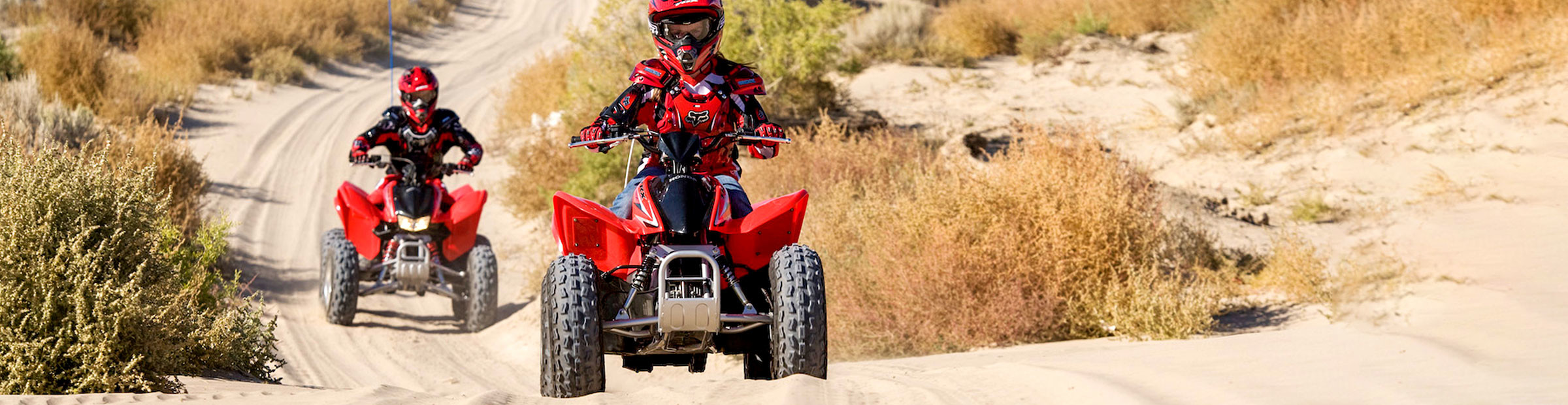 2021 Honda ATV Collection