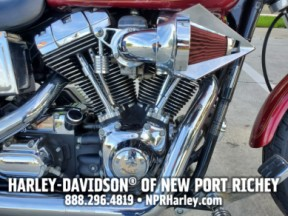 2004 HARLEY-DAVIDSON FXDL DYNA LOW RIDER thumb 1