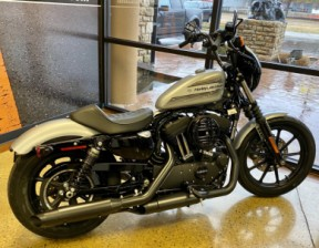 Barracuda Silver 2020 Harley-Davidson® Iron 1200™ XL1200NS thumb 1