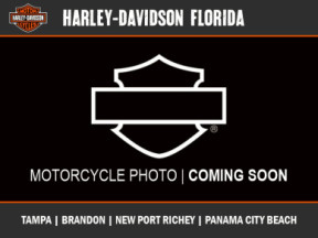 Harley-Davidson<sup>®</sup> 2020 Ultra Limited thumb 3