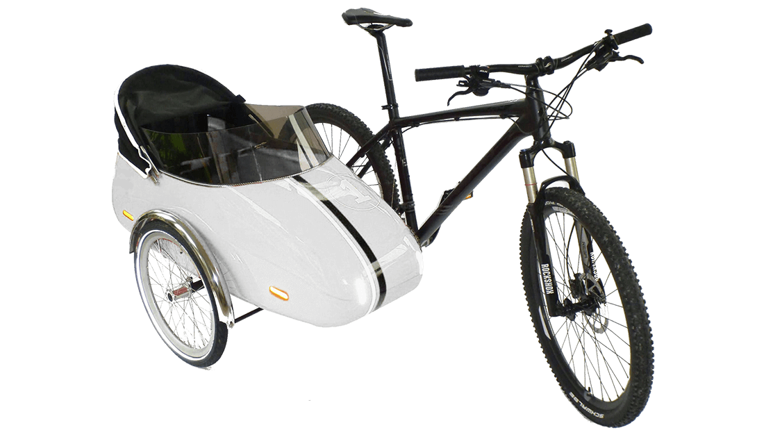2020 Bicycle Sidecar