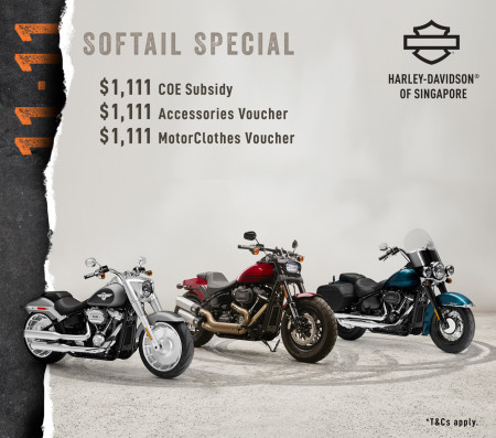 11.11 Softail Special