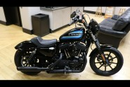 Used Low Mileage 2019 Harley-Davidson® Sportster Iron 1200 XL1200NS