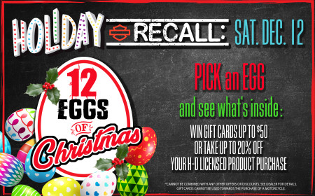 Holiday Recall # 2- 12 Eggs of Christmas