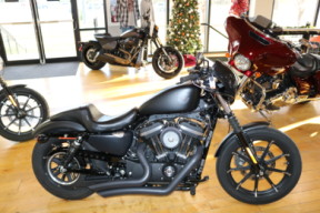 Used Low Mileage 2020 Harley-Davidson® Sportster Iron 883 XL883N  thumb 2