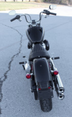 FXST 2020 Softail Standard<sup>®</sup> thumb 2