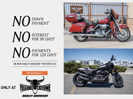 TRIPLE NO Financing Offer on NEW Harley-Davidson's!