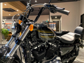 2020 Harley-Davidson® Forty-Eight® Special thumb 1