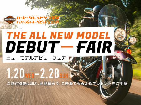 2021 THE ALL NEW MODEL DEBUT-FAIR