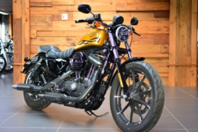2016 Harley-Davidson® Iron 883™ Hard Candy Gold Flake thumb 3